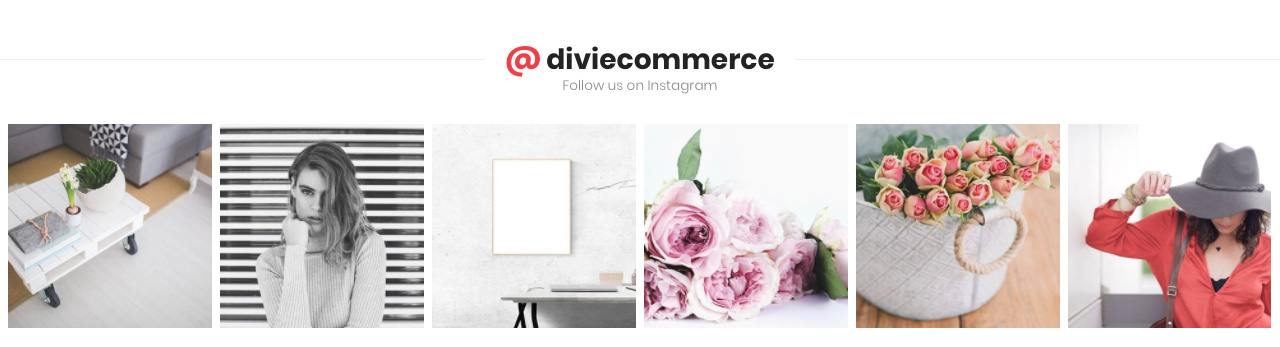 Divi-Space-Divi-Ecommerce-Child-Theme-Instagram-Feed