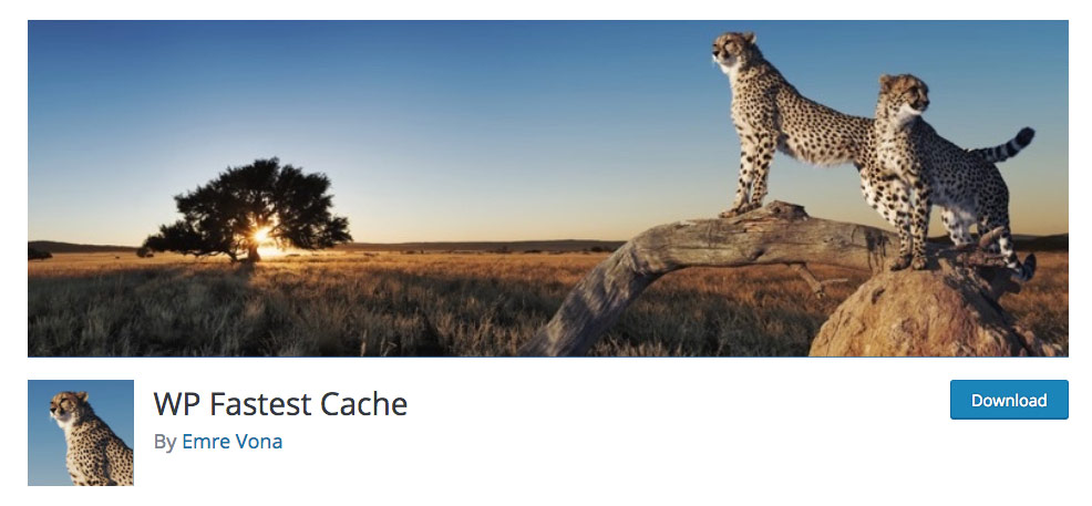 WP Fastest Cache caching plugin