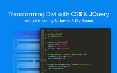 Master CSS and jQuery with the Divi Course: Transforming Divi with CSS & jQuery [UPDATED 7/26]