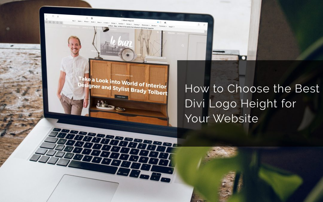 How to Choose the Best Divi Logo Height for Your Website