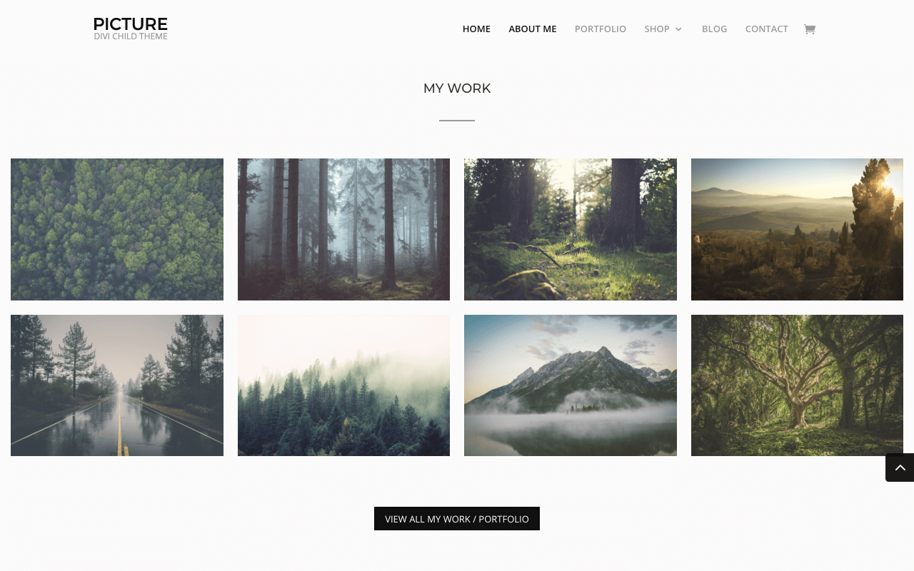 Free Divi Child Themes Picture by Candy Themes