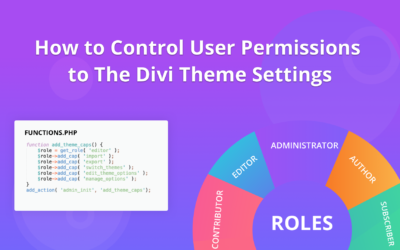 How to Control User Permissions for the Divi Theme