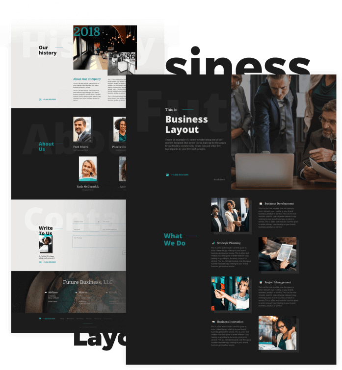 Best Free Divi Layout Packs Business Light and Dark from Divi Space