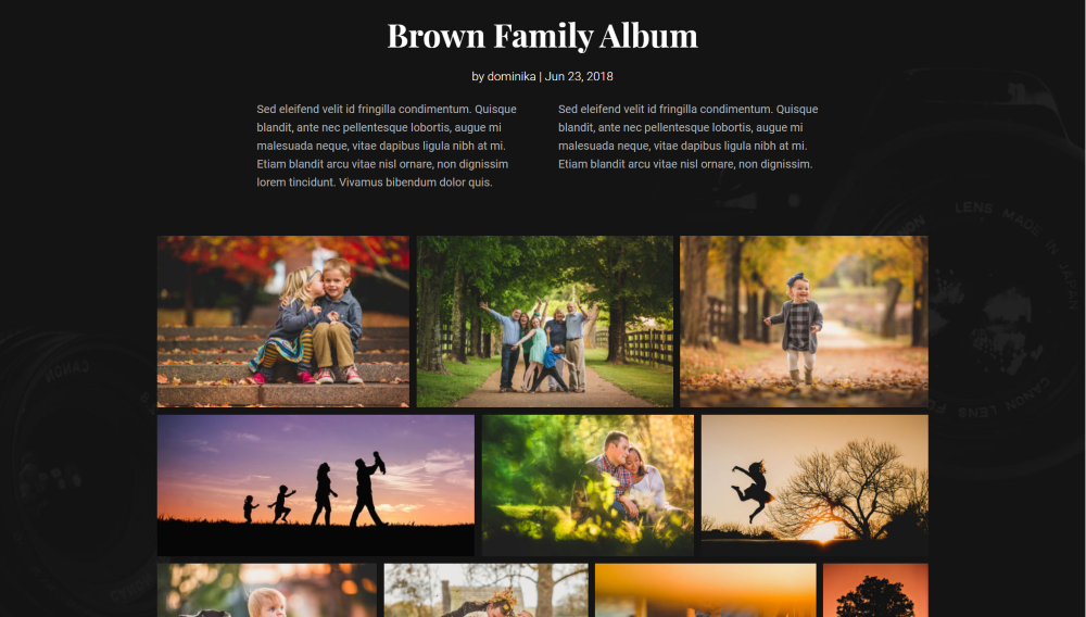 Divi Photography child theme gallery