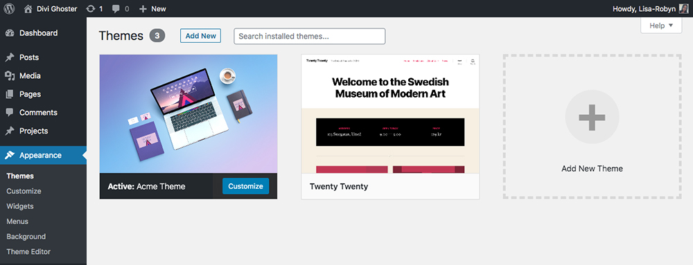 WordPress Themes console with Divi theme customized with custom branding