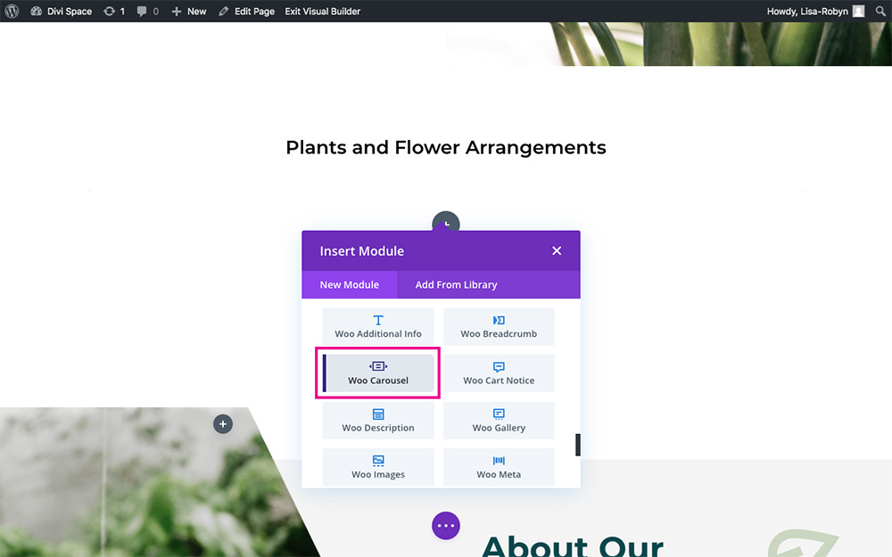 WooCommerce Divi Carousel plugin add module