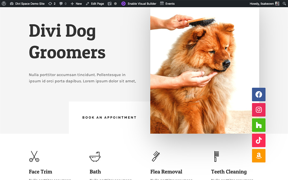 Divi website with vertical floating social icons