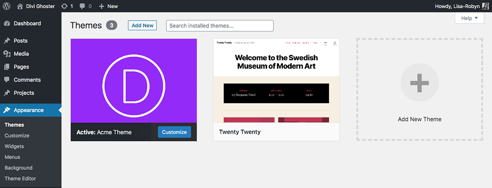 Divi Ghoster set up post change theme name